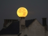 LUNAR-ECLIPSE/SUPERMOON
